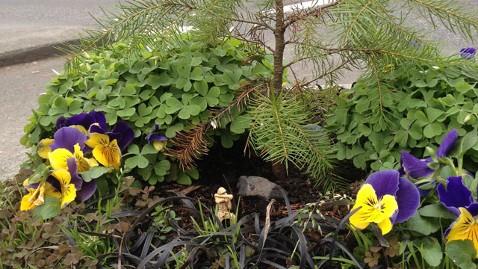 ht worlds smallest park portland thg 130410 wblog Controversy Over Guinness Smallest Park Designation