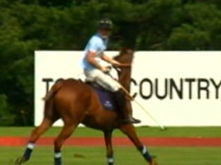 Prince Harry Plays Polo on Final Day of US Visit